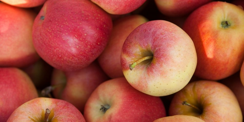 Crunch Into Maryland Apples