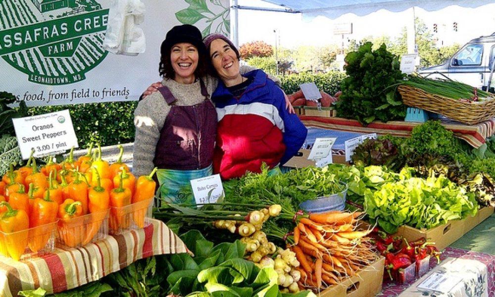 Maryland Farmer's Markets