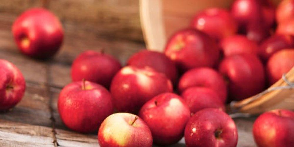 Choose Maryland Apples