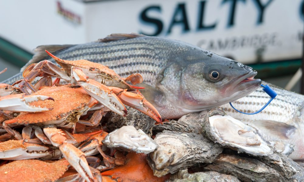 Celebrate 'Buy Maryland Seafood Days'