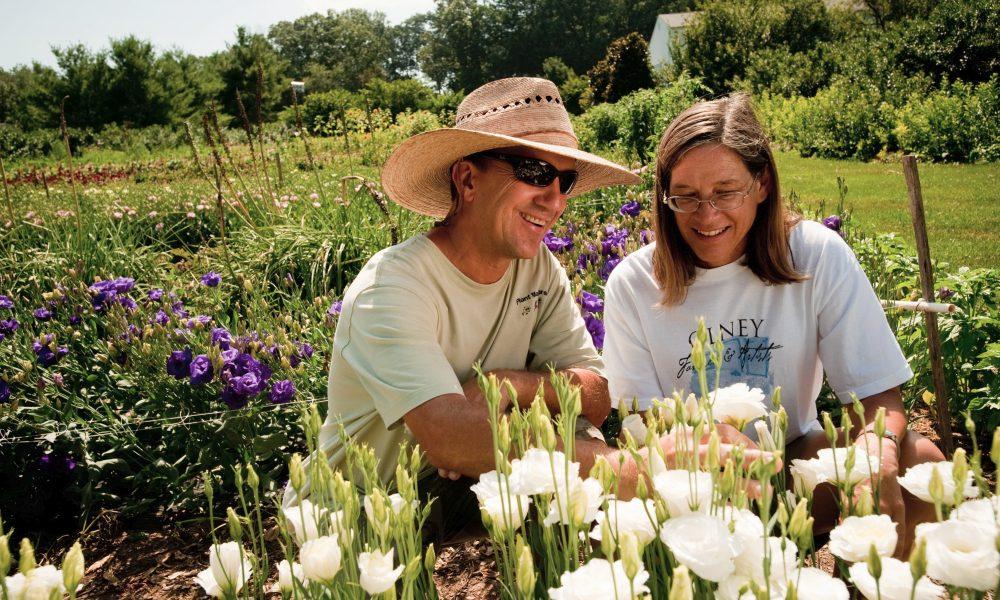 Maryland Nurseries & Garden Centers