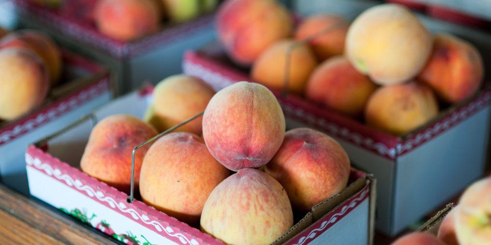 Maryland Peach Season!