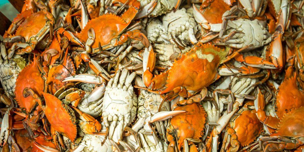 Crabs and Rockfish! Make it Maryland